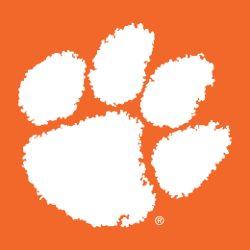clemson-tigers-secondary-logo-1977-present-5