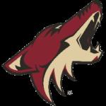 Arizona Coyotes Primary Logo 2015 - 2021