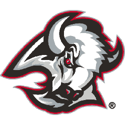 Buffalo Sabres Primary Logo 2000 - 2006