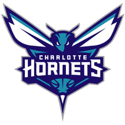 Charlotte Hornets Primary Logo