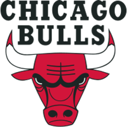 Chicago Bulls Primary Logo