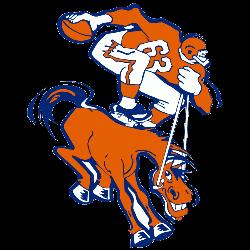 Denver Broncos Primary Logo | Sports