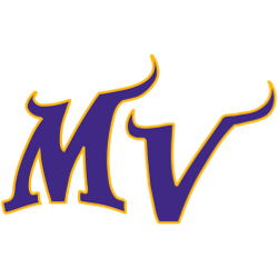 minnesota-vikings-alternate-logo-1998-present