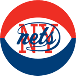 New York Nets Primary Logo