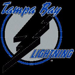Tampa Bay Lightning Primary Logo 1993 - 2001