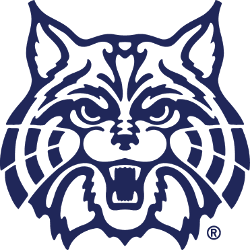 arizona-wildcats-secondary-logo-1990-present-2