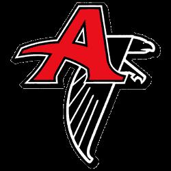 Atlanta Falcons Alternate Logo 1998 - 2002