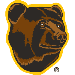 Boston Bruins Alternate Logo 1996 - 2007