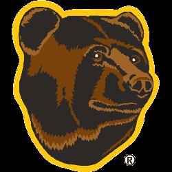 boston-bruins-alternate-logo-1996-2007