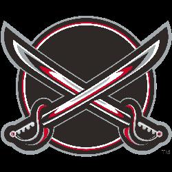 Buffalo Sabres Alternate Logo 2001 - 2006