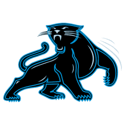 carolina-panthers-alternate-logo-1995-2011-3