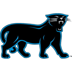 carolina-panthers-alternate-logo-1995-2011-5