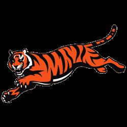 cincinnati-bengals-alternate-logo-1997-present