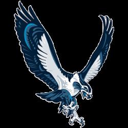 seattle-seahawks-alternate-logo-2002-2011