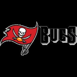 tampa-bay-buccaneers-wordmark-logo-2014-present