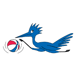 dallas-chaparrals-primary-logo-1968-1970