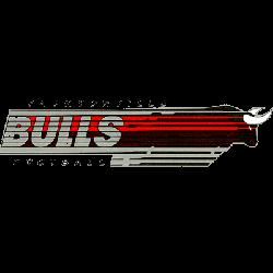 jacksonville-bulls-wordmark-logo-1984-1985