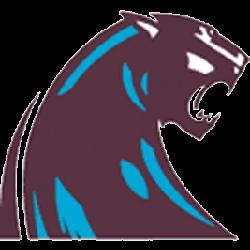 michigan-panthers-alternate-logo-1983-1984-2