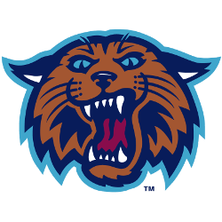 villanova-wildcats-alternate-logo-1996-2003-4