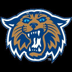 villanova-wildcats-alternate-logo-2004-present-4