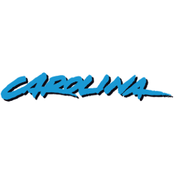 carolina-panthers-wordmark-logo-1995-2011