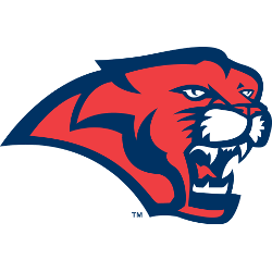 Houston Cougars Secondary Logo 2003 - 2011