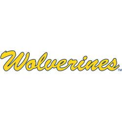 Michigan Wolverines Wordmark Logo 1996 - Present