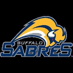 buffalo-sabres-wordmark-logo-2007-2010