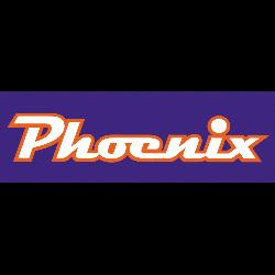 phoenix-mercury-wordmark-logo-2011-present-2