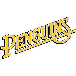 pittsburgh-penguins-wordmark-logo-1989-1992