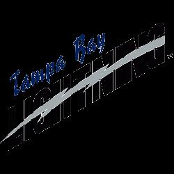 tampa-bay-lightning-wordmark-logo-2002-2007