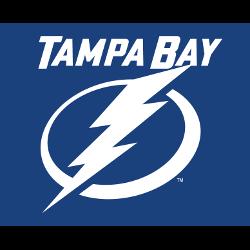 tampa-bay-lightning-wordmark-logo-2012-present