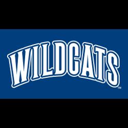 villanova-wildcats-wordmark-logo-1996-present-5
