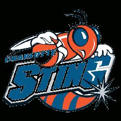 charlotte-sting-primary-logo-2004-2006