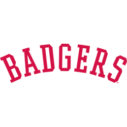 wisconsin-badgers-wordmark-logo-1970-1990-3