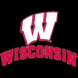 wisconsin-badgers-alternate-logo-2002-present-5