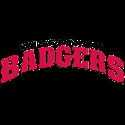 wisconsin-badgers-wordmark-logo-2002-2017