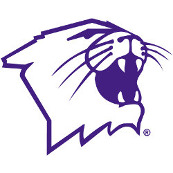 northwestern-wildcats-partial-logo-1981-present-2