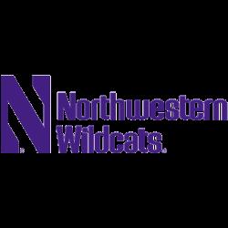 Northwestern Wildcats Wordmark Logo 1981 - Present