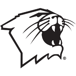 northwestern-wildcats-partial-logo-1981-present