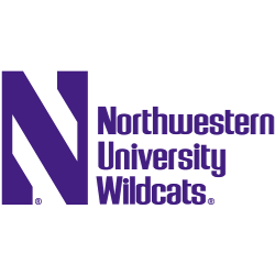 Northwestern Wildcats Wordmark Logo 1981 - Present