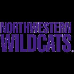 northwestern-wildcats-wordmark-logo-1981-present-5
