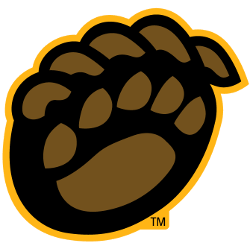 Baylor Bears Alternate Logo 2005 - 2019