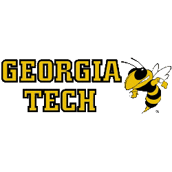 georgia-tech-yellow-jackets-wordmark-logo-1991-present