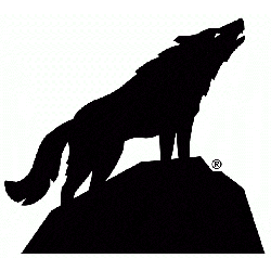 North Carolina State Wolfpack Alternate Logo 2006 - Present