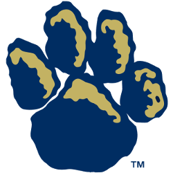 pittsburgh-panthers-alternate-logo-1997-2015-3