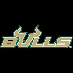 south-florida-bulls-wordmark-logo-2003-present-2