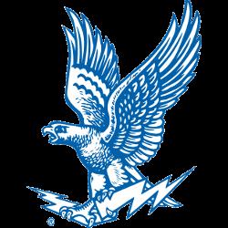 air-force-falcons-alternate-logo-1963-1994-4