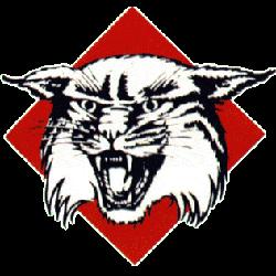 davidson-wildcats-primary-logo-1985-2009