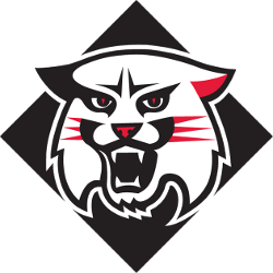 davidson-wildcats-alternate-logo-2010-present-3